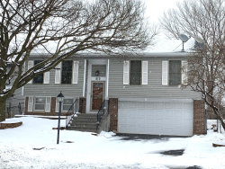 Photo of 815 Rodenburg Road, Roselle, IL 60172 (MLS # 10618682)