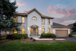 Photo of 328 Millcreek Lane, Naperville, IL 60540 (MLS # 10619917)