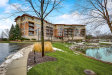 Photo of 45 Prairie Park Drive, Unit Number 210, Wheeling, IL 60090 (MLS # 10620511)