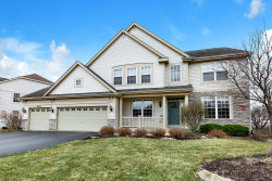 Photo of 26215 Mapleview Drive, Plainfield, IL 60586 (MLS # 10622793)