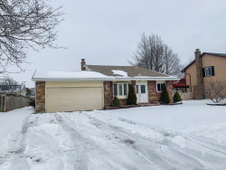 Photo of 254 Terry Court, Woodstock, IL 60098 (MLS # 10623196)
