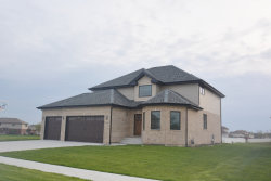 Photo of 4994 W Cardinal Court, Monee, IL 60449 (MLS # 10623660)