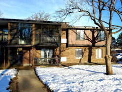 Photo of 4704 W Northfox Lane, Unit Number 8, McHenry, IL 60050 (MLS # 10628083)