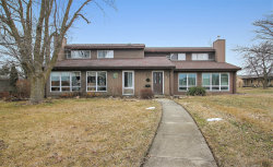 Photo of 114 Crescent Lane, Unit Number A, Cabery, IL 60919 (MLS # 10629152)