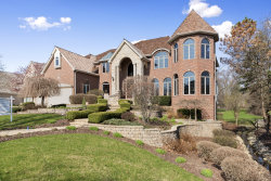 Photo of 103 Settlers Drive, Naperville, IL 60565 (MLS # 10632059)