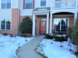Photo of 2249 Concord Drive, Unit Number 2249, McHenry, IL 60050 (MLS # 10633643)