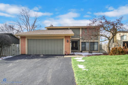 Photo of 754 E Woodfield Trail, Roselle, IL 60172 (MLS # 10635845)