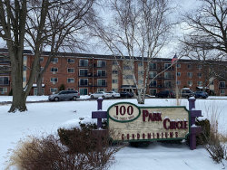 Photo of 100 W Park Circle Drive, Unit Number 4B, Wheaton, IL 60187 (MLS # 10638222)