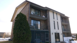 Photo of 9933 Shady Lane, Unit Number 2A, Orland Park, IL 60462 (MLS # 10639195)
