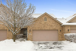 Photo of 9053 Newcastle Court, Tinley Park, IL 60487 (MLS # 10639357)