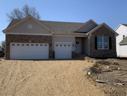 Photo of 3109 Manchester Drive, Montgomery, IL 60538 (MLS # 10639801)