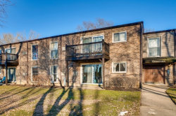 Photo of 301 N Carter Street, Unit Number 101, Palatine, IL 60067 (MLS # 10642377)