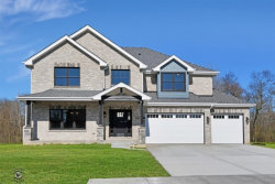 Photo of 22659 Lilly Pad Lane, Frankfort, IL 60423 (MLS # 10642865)