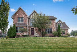 Photo of 9835 Folkers Drive, Frankfort, IL 60423 (MLS # 10643167)
