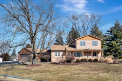 Photo of 8240 Paloma Drive, Orland Park, IL 60462 (MLS # 10643394)