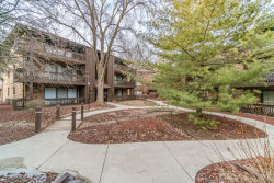 Photo of 9609 Austin Avenue, Unit Number 3E, Oak Lawn, IL 60453 (MLS # 10644575)