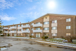 Photo of 3000 Bayside Drive, Unit Number 113, Palatine, IL 60074 (MLS # 10644722)