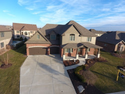 Photo of 2066 Water Chase Drive, New Lenox, IL 60451 (MLS # 10644863)