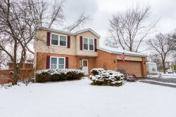 Photo of 562 Siems Circle, Roselle, IL 60172 (MLS # 10645994)