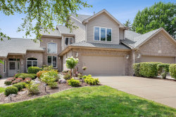 Photo of 14306 S Blue Spruce Court, Orland Park, IL 60462 (MLS # 10647057)