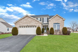 Photo of 10810 Great Plaines Court, Huntley, IL 60142 (MLS # 10648874)