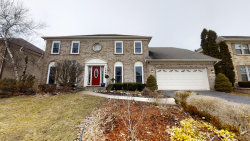 Photo of 1948 Slippery Rock Road, Naperville, IL 60565 (MLS # 10649923)