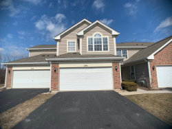 Photo of 295 Wildspring Court, Unit Number 295, Itasca, IL 60143 (MLS # 10656464)