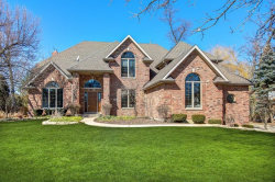 Photo of 11998 Holly Court, Lemont, IL 60439 (MLS # 10657221)