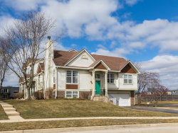 Photo of 1650 Apple Tree Lane, West Chicago, IL 60185 (MLS # 10663668)
