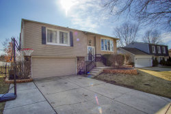 Photo of 915 Longford Drive, Roselle, IL 60172 (MLS # 10664588)