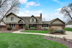 Photo of 1S724 S Ellyn Avenue, Glen Ellyn, IL 60137 (MLS # 10668788)
