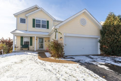 Photo of 86 E Old Mill Trail, Antioch, IL 60002 (MLS # 10668937)