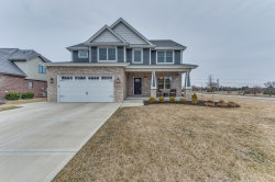 Photo of 1971 Water Chase Drive, New Lenox, IL 60451 (MLS # 10671892)
