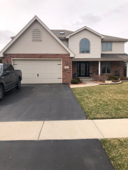 Photo of 751 Downing Street, New Lenox, IL 60451 (MLS # 10676585)