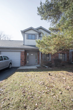 Photo of 4105 N Pheasant Trail Court, Unit Number 3, Arlington Heights, IL 60004 (MLS # 10677311)