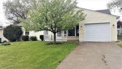 Photo of 10240 Hyacinth Drive, Orland Park, IL 60462 (MLS # 10678329)
