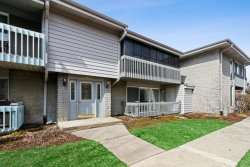 Photo of 15825 Orlan Brook Drive, Unit Number 21, Orland Park, IL 60462 (MLS # 10678884)
