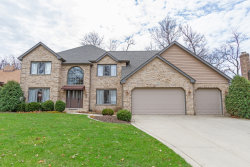 Photo of 920 Wild Ginger Trail, West Chicago, IL 60185 (MLS # 10684748)
