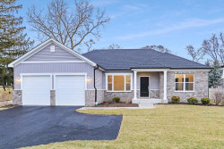 Photo of 26105 W Forrester Drive, Plainfield, IL 60585 (MLS # 10704682)