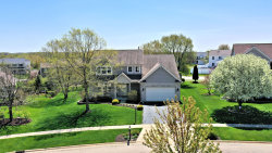Photo of 214 N Cross Trail, McHenry, IL 60050 (MLS # 10717022)