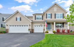 Tiny photo for 8937 Cook Way, Huntley, IL 60142 (MLS # 10717680)