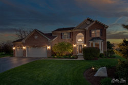 Photo of 351 Summerdale Lane, Algonquin, IL 60102 (MLS # 10719204)