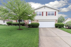 Photo of 365 Grandview Court, Algonquin, IL 60102 (MLS # 10720323)