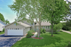Photo of 624 Whitmore Trail, McHenry, IL 60050 (MLS # 10724789)