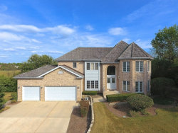Photo of 15168 Grandview Drive, Orland Park, IL 60467 (MLS # 10728549)