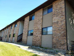 Photo of 391 S Collins Street, Unit Number A, South Elgin, IL 60177 (MLS # 10728774)