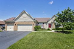 Photo of 3204 Kendall Crossing, Johnsburg, IL 60051 (MLS # 10729175)