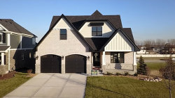 Photo of 16343 Emerson Drive, Orland Park, IL 60467 (MLS # 10730887)