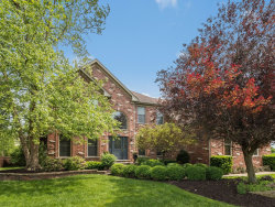 Photo of 26144 Whispering Woods Circle, Plainfield, IL 60585 (MLS # 10733541)