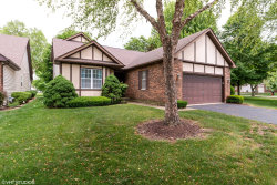 Photo of 13461 Redberry Circle, Plainfield, IL 60544 (MLS # 10743124)